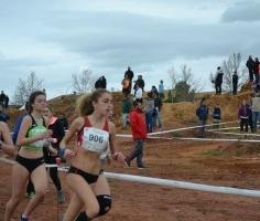 Campeonatos de Andalucía de Pista al Aire Libre